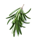 Rosemary infused olive oil - Monadnock Oil and Vinegar, LLC