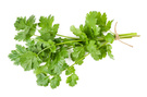 Cilantro and roasted onion infused olive oil - Monadnock Oil and Vinegar, LLC